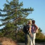 wandelen-natuur
